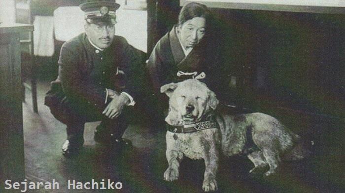 Sejarah Kisah Patung Hachiko